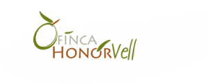 finca honor vell, holiday villa majorca